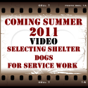 Video Coming Summer 2011