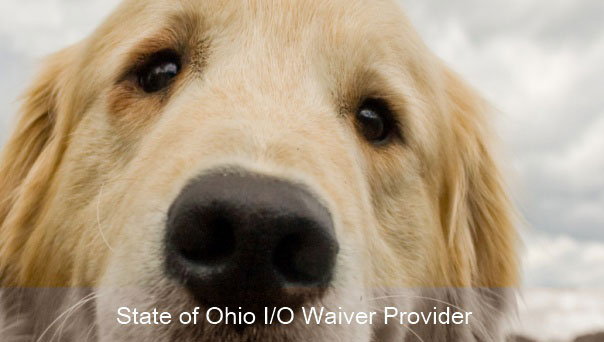 State of Ohio I/O Waiver Provider