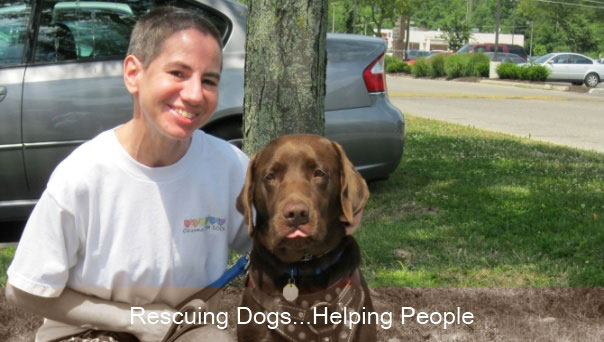Rescuing Dogs... Helping People